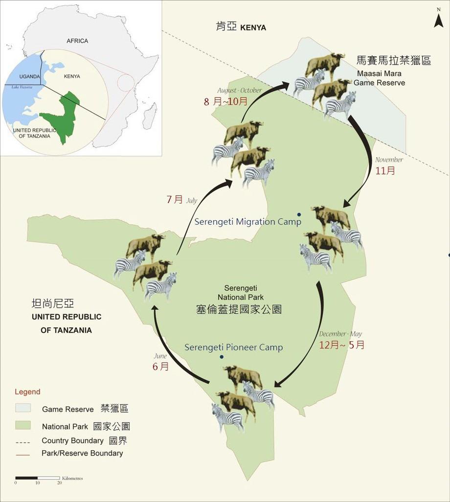 野生奇观-非洲动物大迁徙